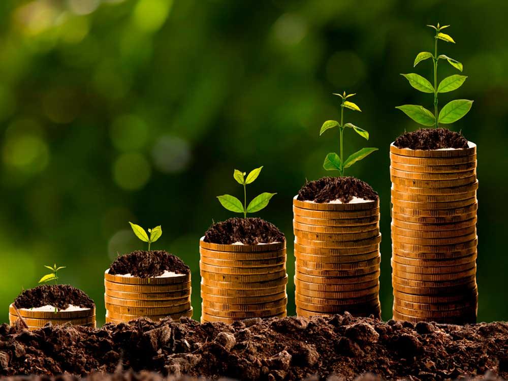 prosperidad_shutterstock