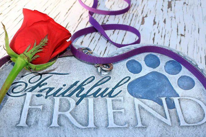Opciones de entierro para mascotas