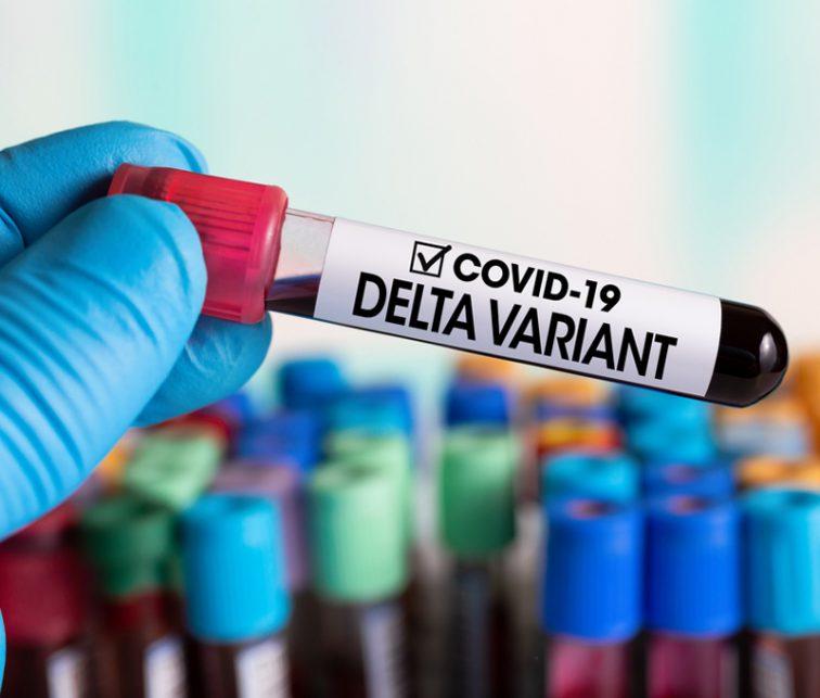 Variante Delta, Covid 19, pandemia, contagios, vacunación